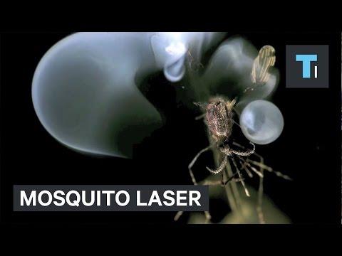 Mosquito laser