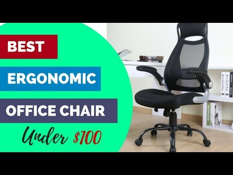 Best Ergonomic Office Chairs Under $100 Reviews (2018 Edition)