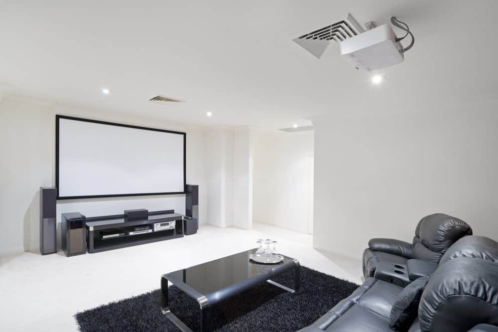 home theater room with dragonfly projector screen