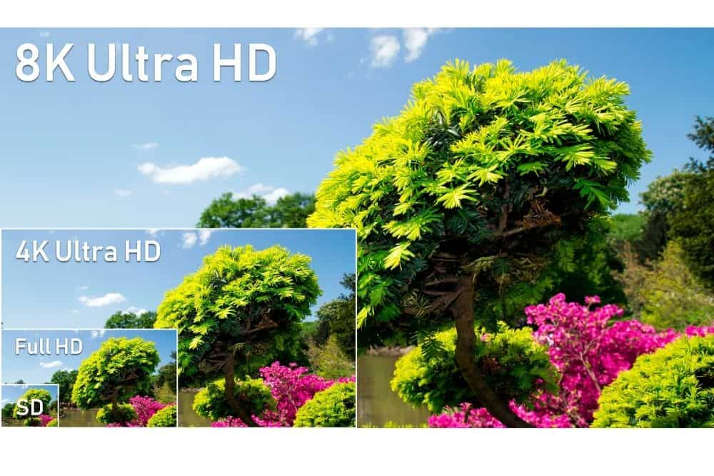 trees picture with different resolutions 8k 4k full HD SG