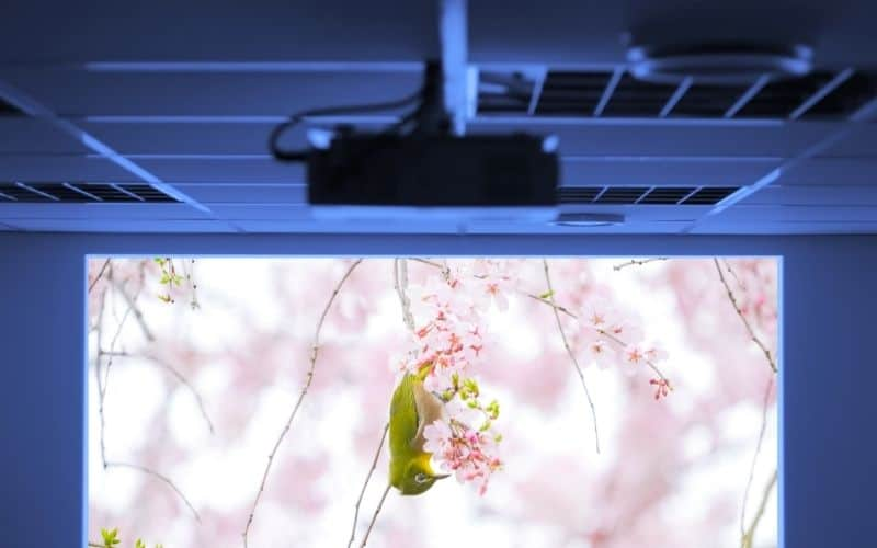 how to rotate screen on epson projector